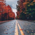 veilig-autorijden-in-de-herfst